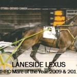 Laneside Lexus