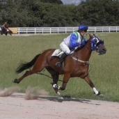World record under saddle set in UK Saturday