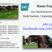 GROUP 1 RACE – TREGARON WELSH CLASSIC FINAL