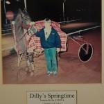 Dillys Springtime 2