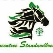 GREENTREE STANDARDBRED MARES PACING SERIES 2018