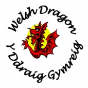 WELSH DRAGON SERIES